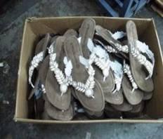 case 361 pic 2 impactiva footwear qa