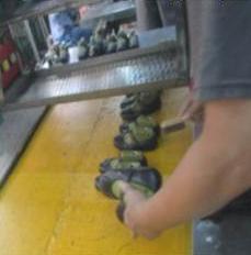 case 451 pic 3 impactiva footwear qa