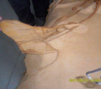 Impactiva Leather Quality Control